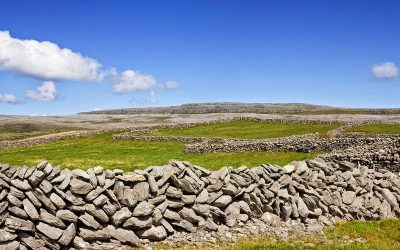 Lessons from an Irish Wall